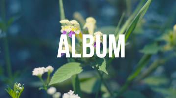 album-ver2